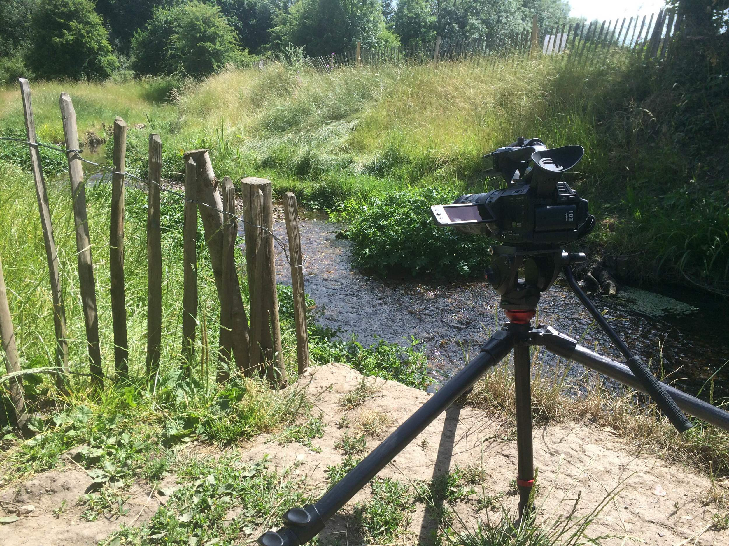 Filming with JVC LS300 Epsom and Ewell
