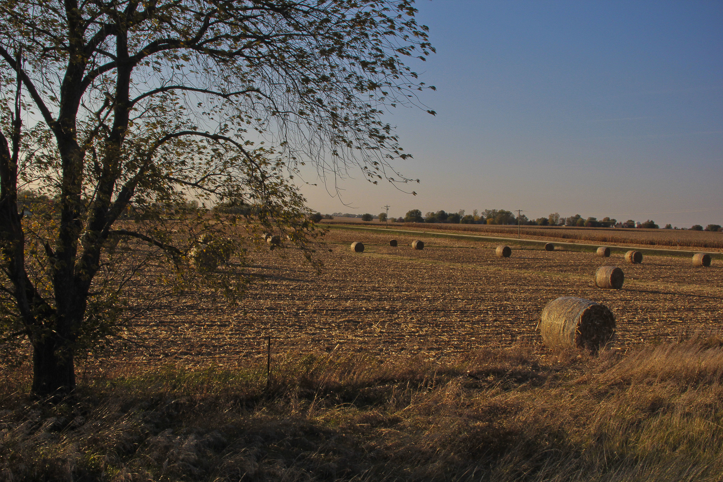 Countryside Coralville, Iowa