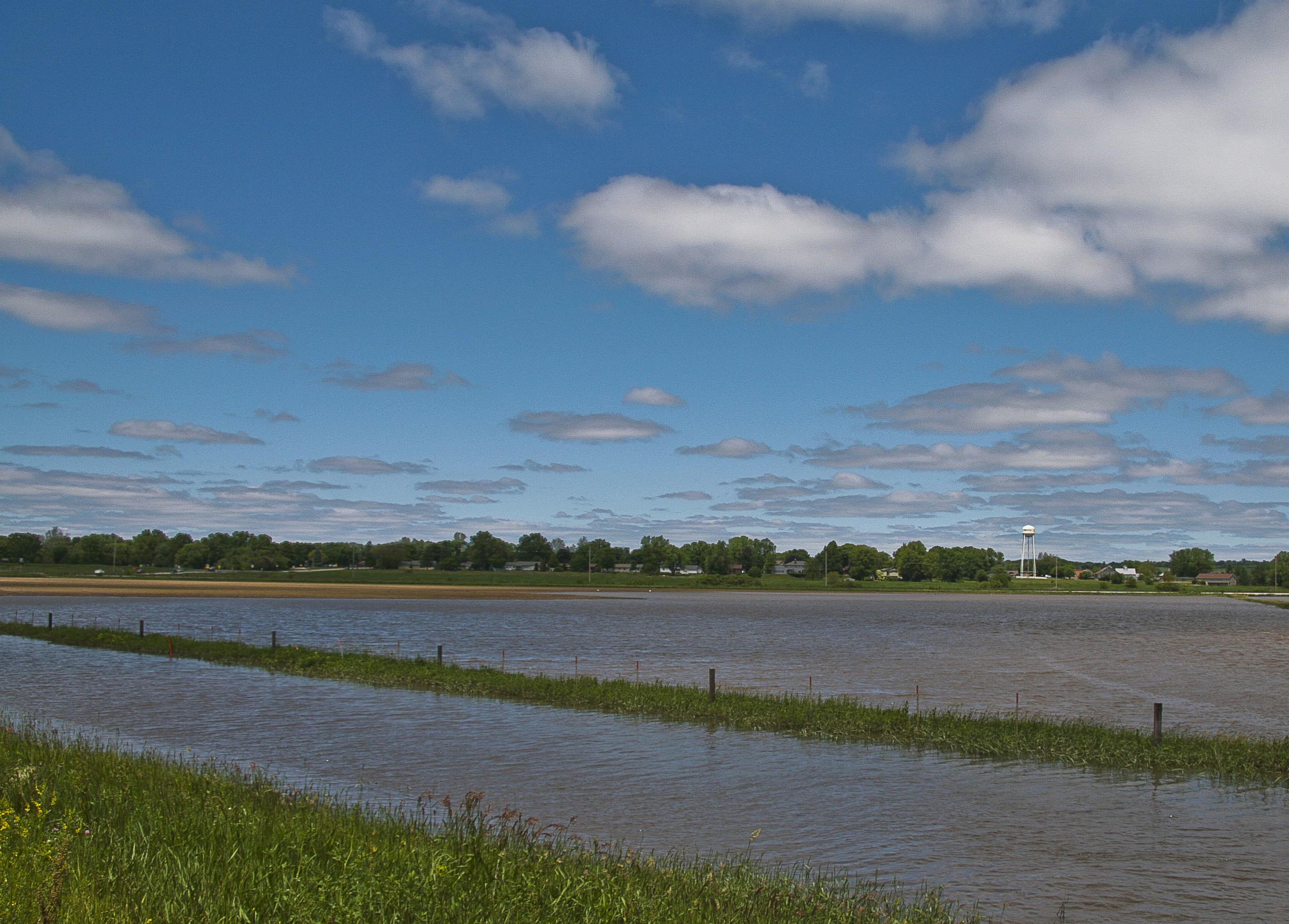 Flood Near Kalona, Iowa