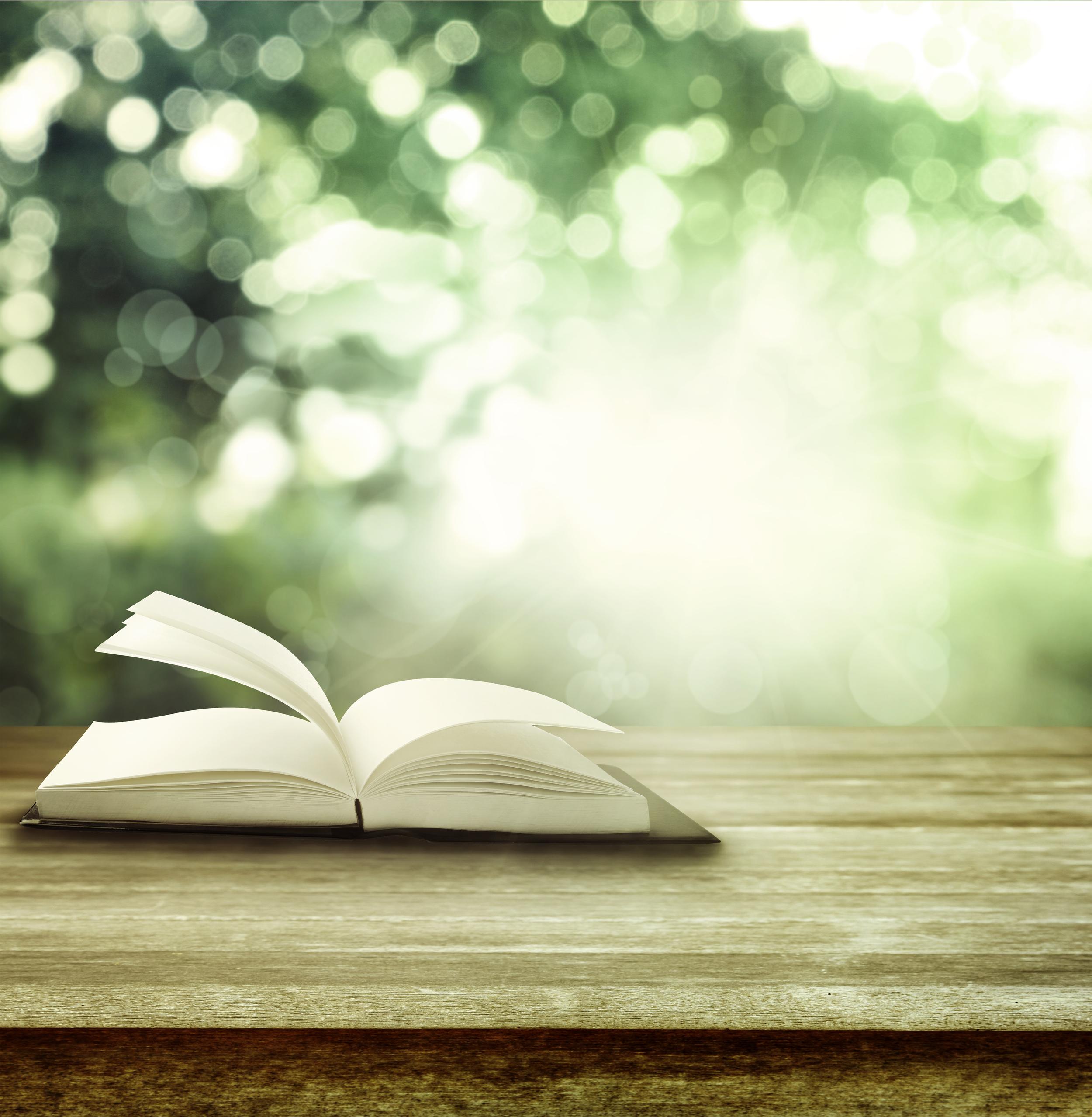 466253501-book-outside.jpg