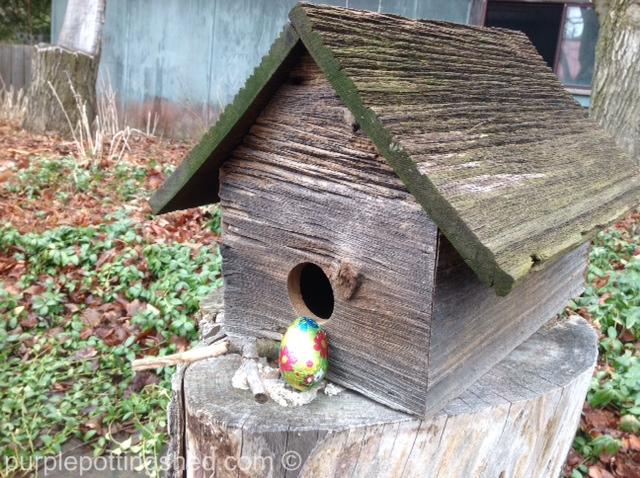 Bird house and egg.jpg