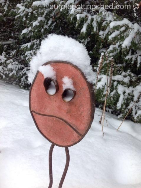 Snow face 2.jpg