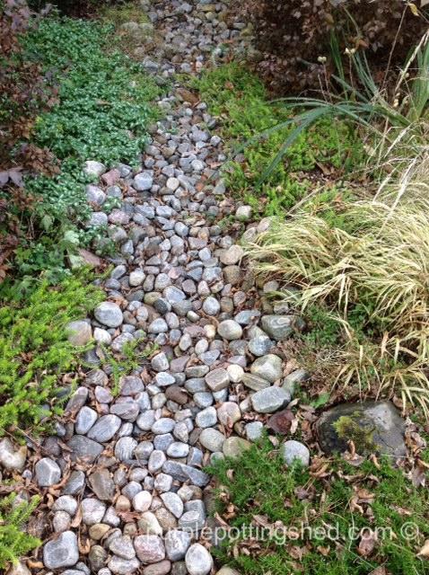 Dry creek bed.jpg