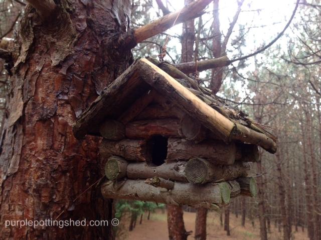 Log house.jpg