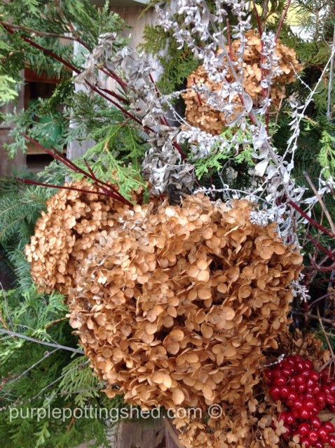 Winter bouquet, hydrangea.jpg