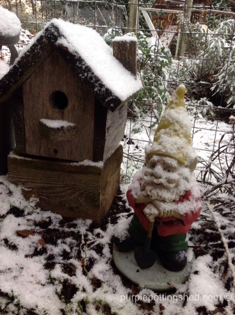 Gnome with snow.jpg