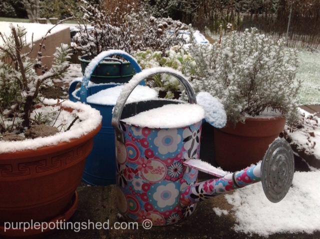 Watering cans with snow.jpg