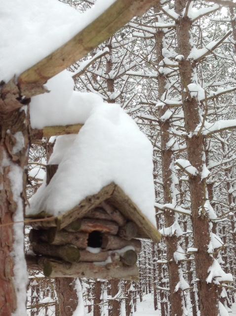 Birdhouse in snow 2.jpg