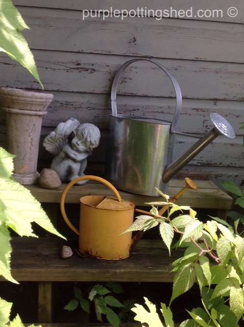 Watering cans on steps.jpg