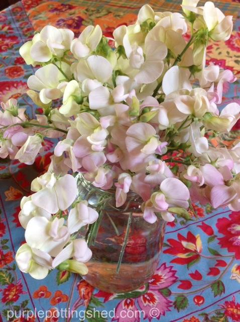 Bouquet, sweet pea.jpg