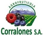 logo_corralones.jpg