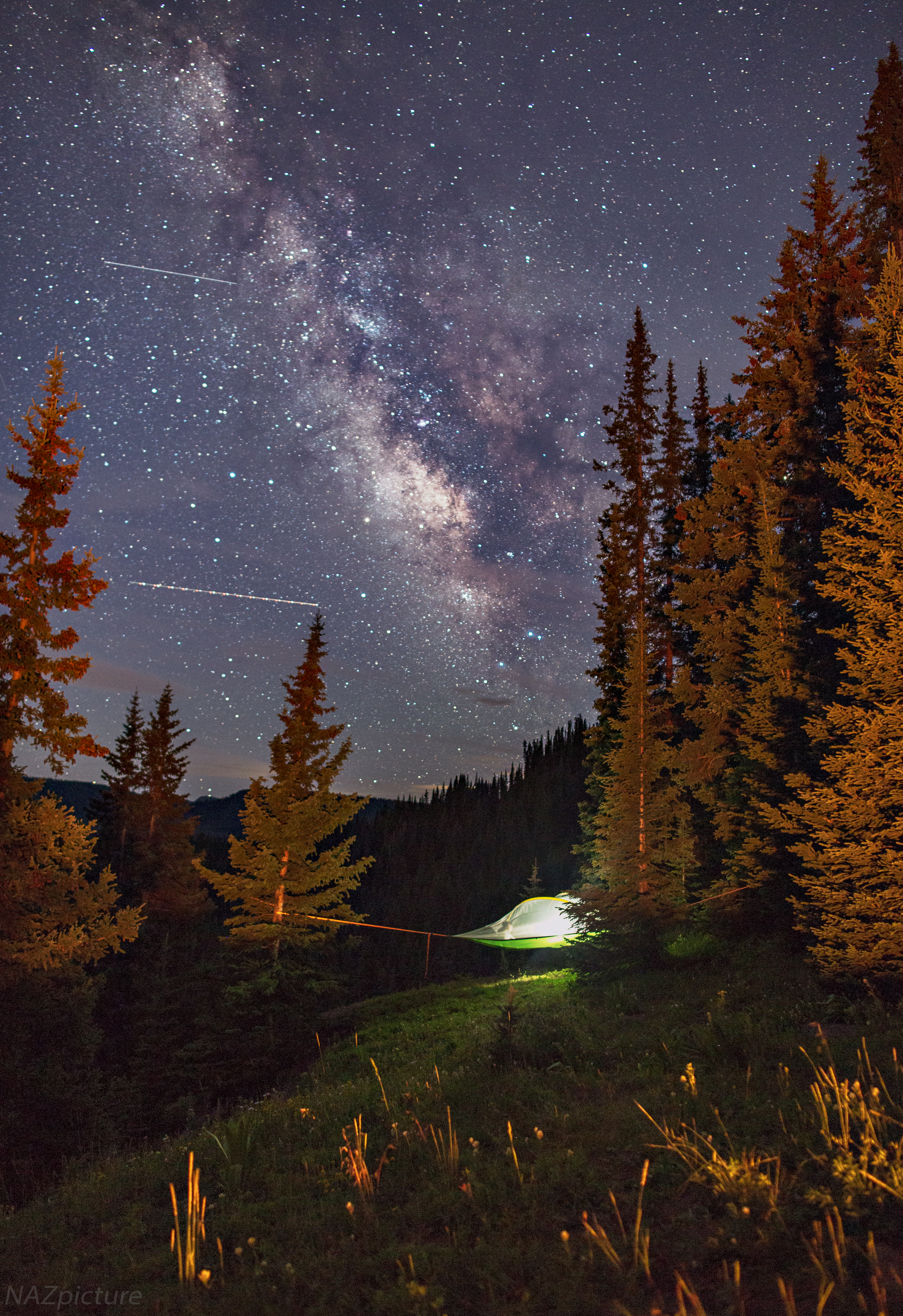 [Shrine Pass, Colorado]