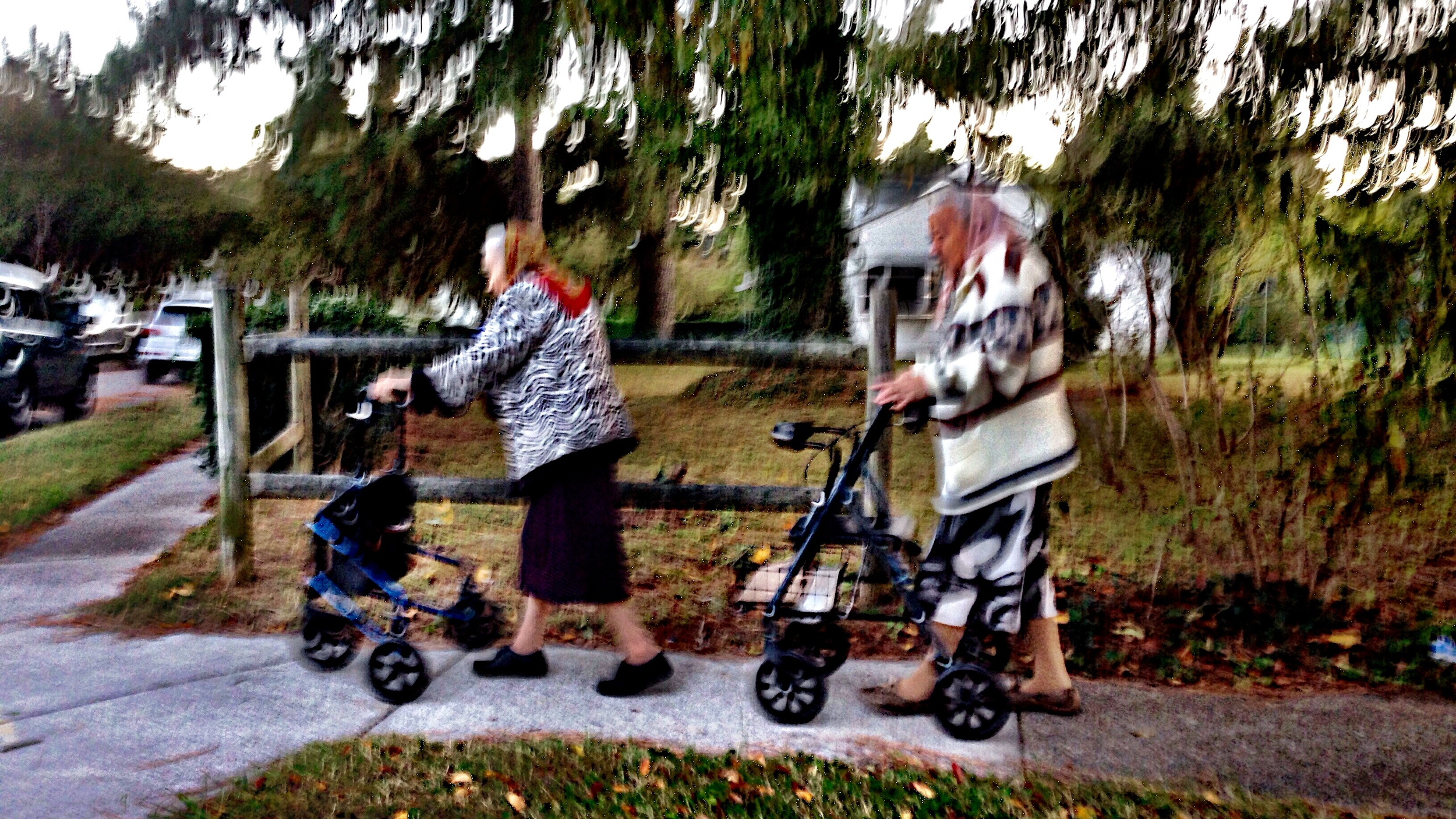 I spotted the Suburban Parkway ladies. Again.