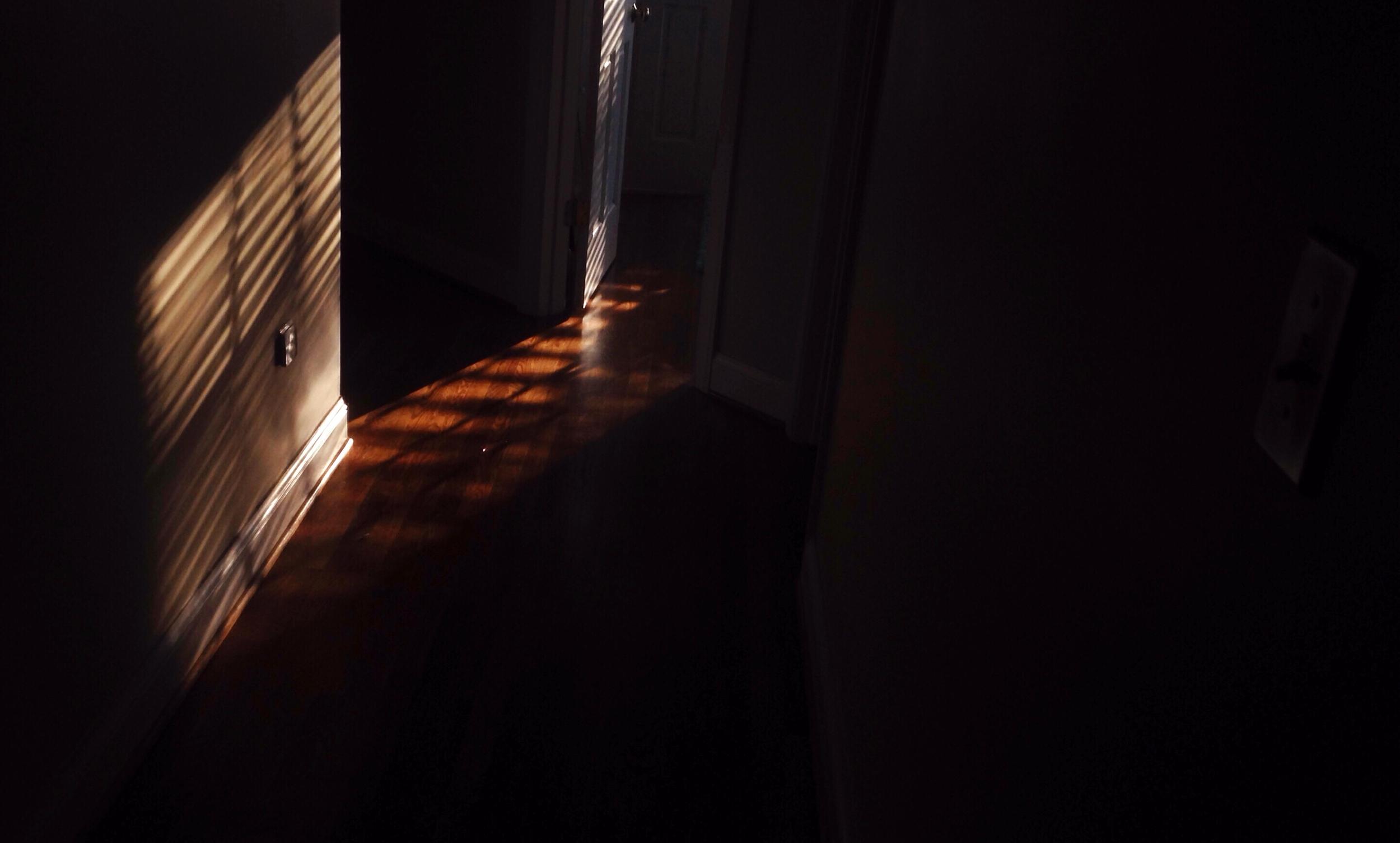 That sweet morning light...