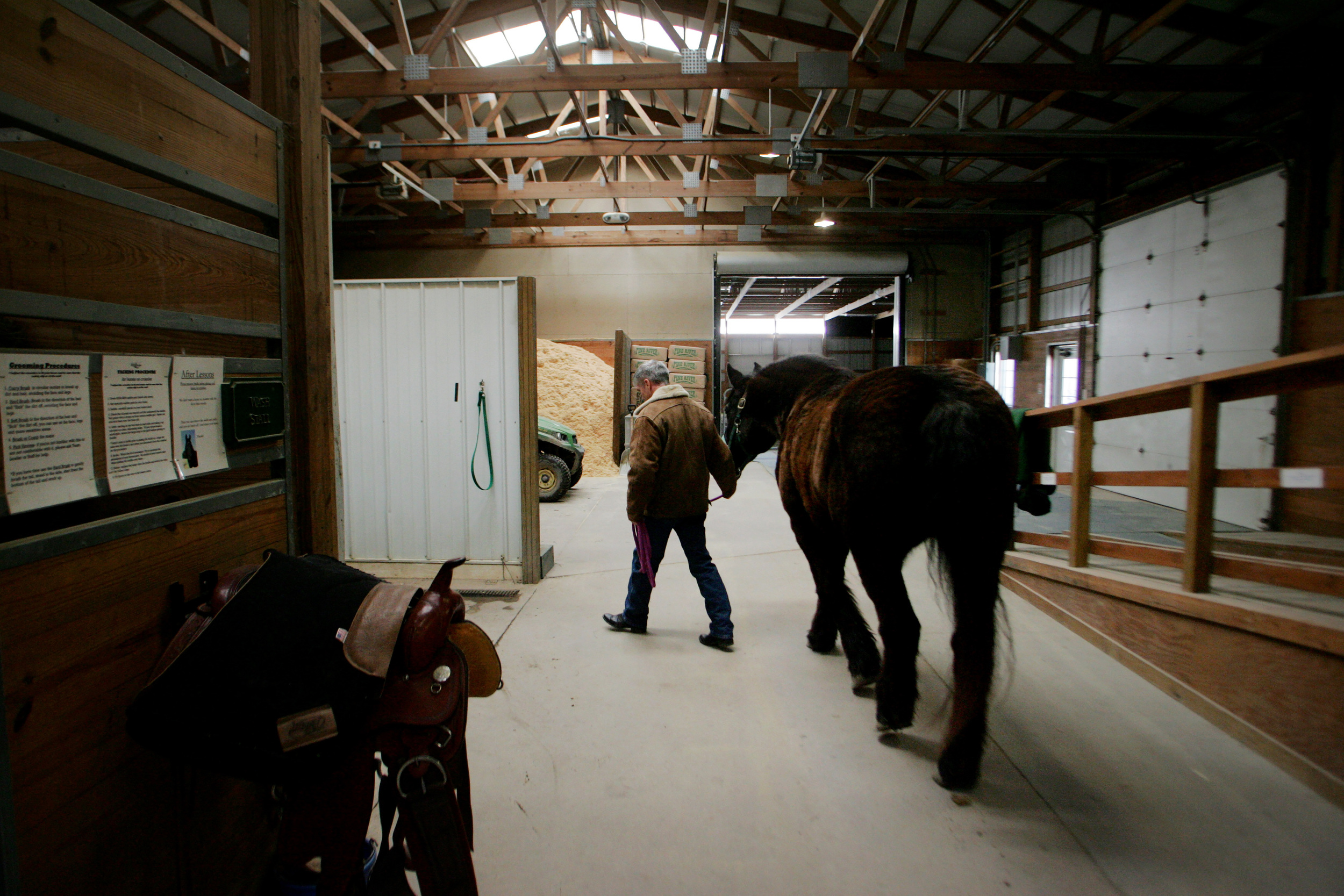 Chris leads Jack to where he'll be brushed and then saddled, Saturday, Jan. 31, 2015.