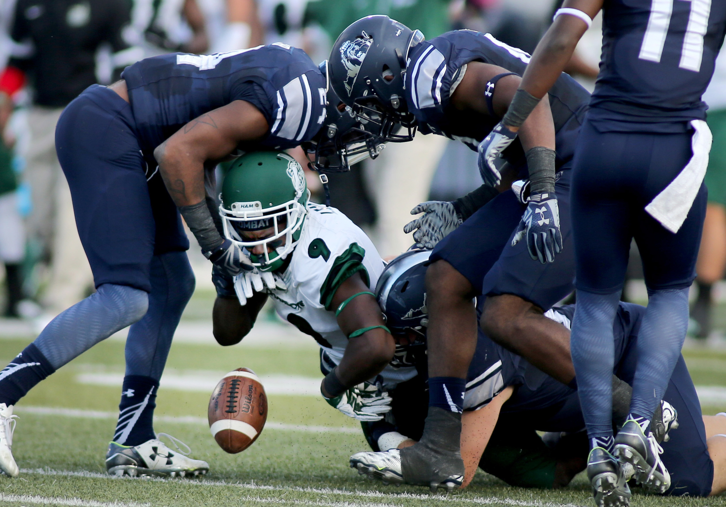 The Old Dominion defense lead by Fellonte Misher, left, TJ Ricks, top center, and Pat Toal, on ground, force a fumble by Charlotte's Uriah LeMay in the second quarter, Saturday, Oct. 17, 2015 at Foreman Field in Norfolk.  (Jason Hirschfeld | For The Virginian-Pilot)