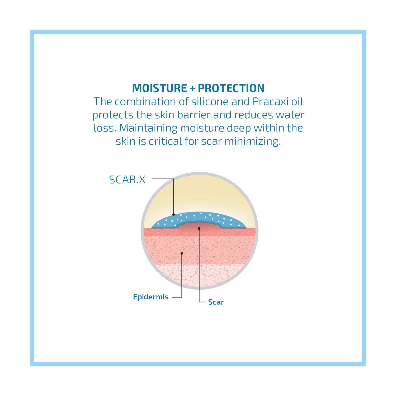 Moisture and Protection Graphic 5x5.jpg