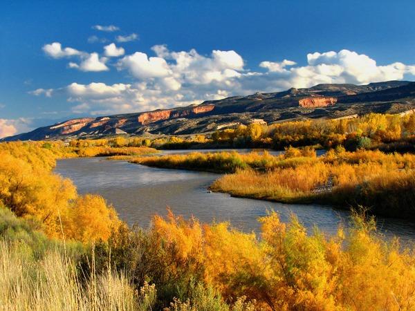 Colorado River at Fruita