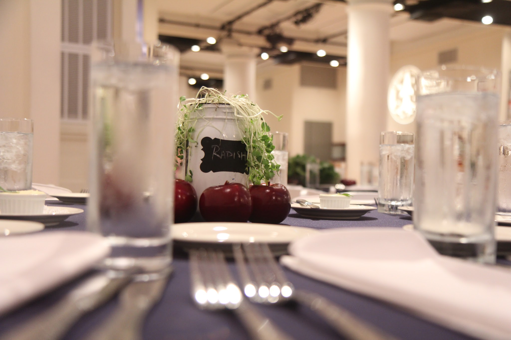 Hydroponically grown radishes and organic apples served as a unique centerpiece. Leading Indoor Agriculture Conference to Discuss Agriculture Technology, Vertical Farming At Its First New York Event at the HELEN MILLS Event Space and Theater in Chelsea, Manhattan.