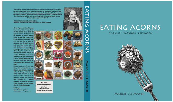 Eating Acorns - By Marcie Lee Mayer