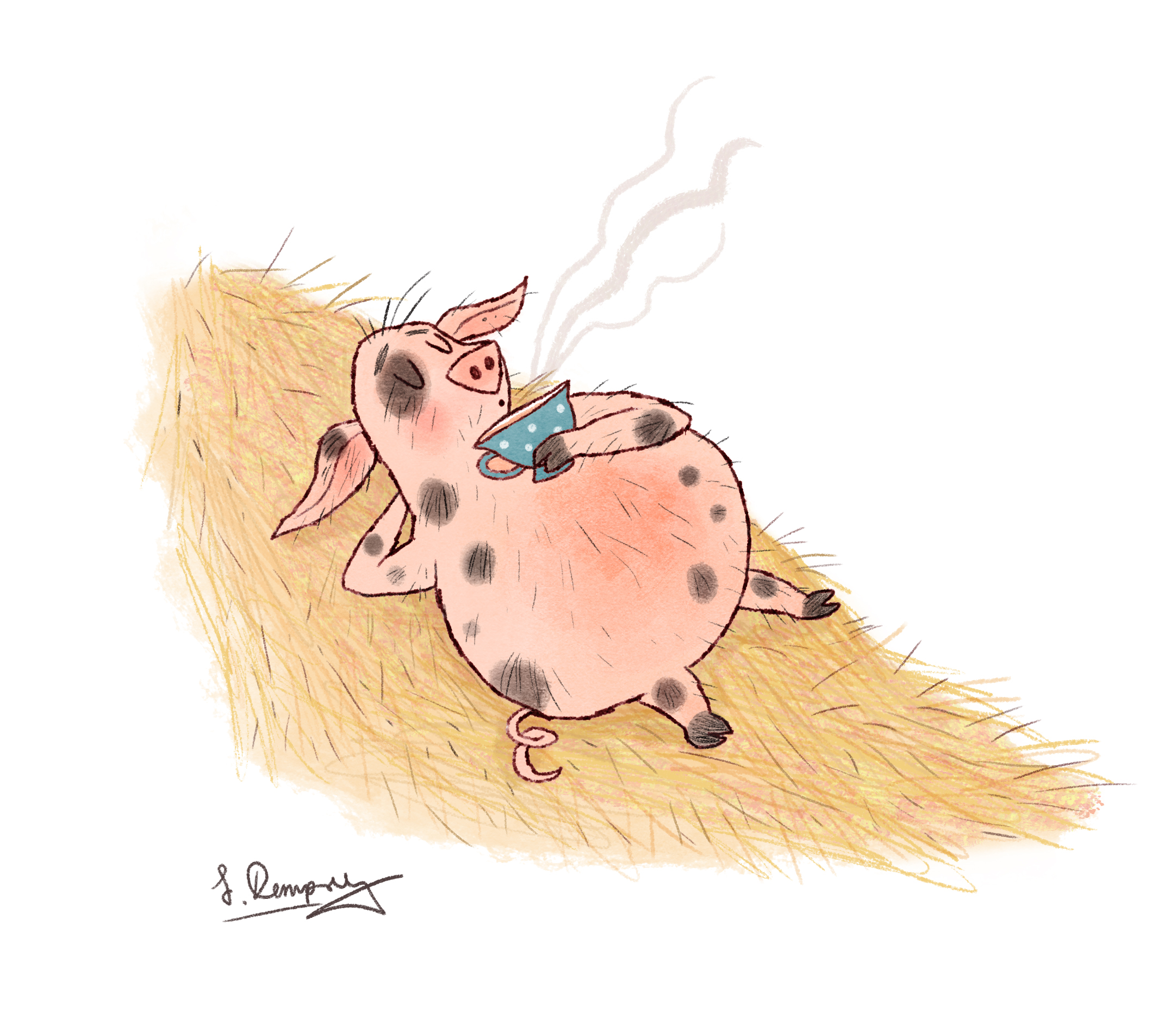Pot bellied pig.jpg