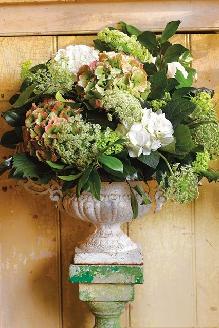 One of Vic Brotherson's fabulous arrangements with stunninghydrangeas. She uses chicken wire in the urn to arrange the flowers. If only we could all emulate this  .