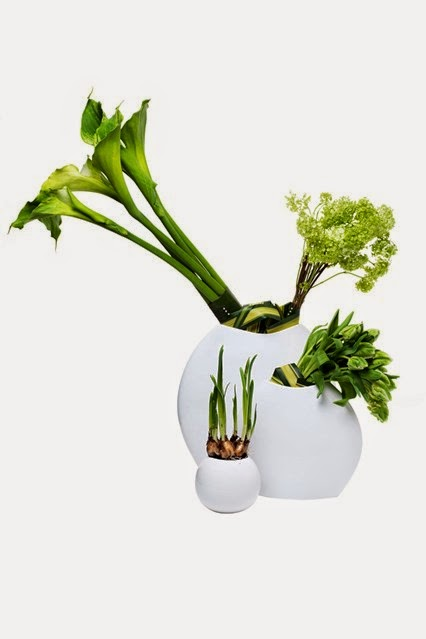 A minimalist sculptural display of green parrot tulips, bulbs and green calla lilies.