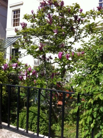 Local+Houses+&+Gardens+(9).JPG