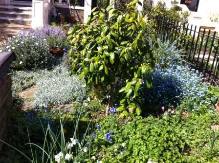 Local+Houses+&+Gardens+(3).JPG
