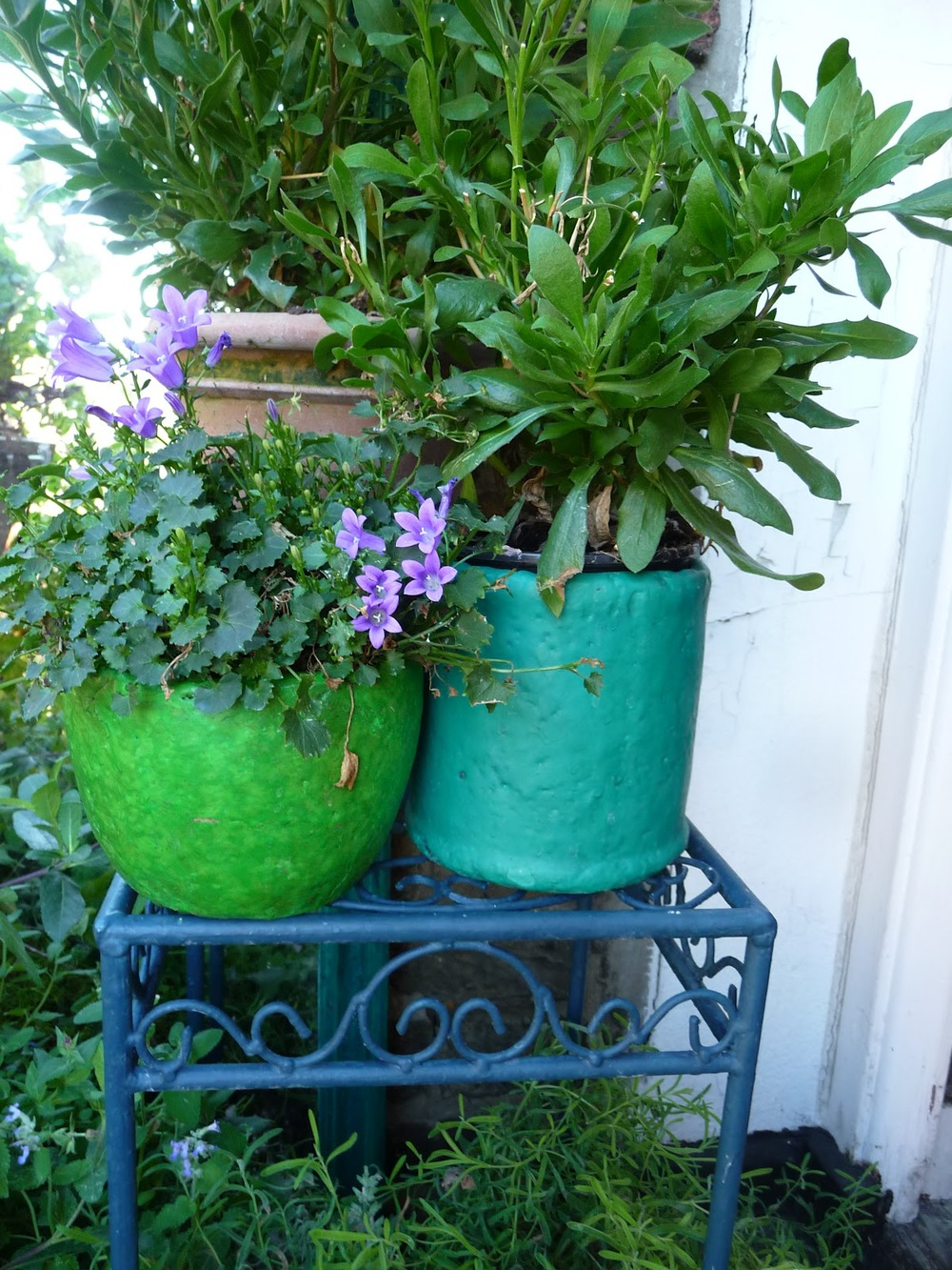 A couple of plant pots and metal table - all  very '  cheap and cheerful' buys.   T  he pot on the left I painted in Annie Sloan's Antibes Green + dark wax, the one on the left in 'Florence'. The little table in Aubusson Blue.