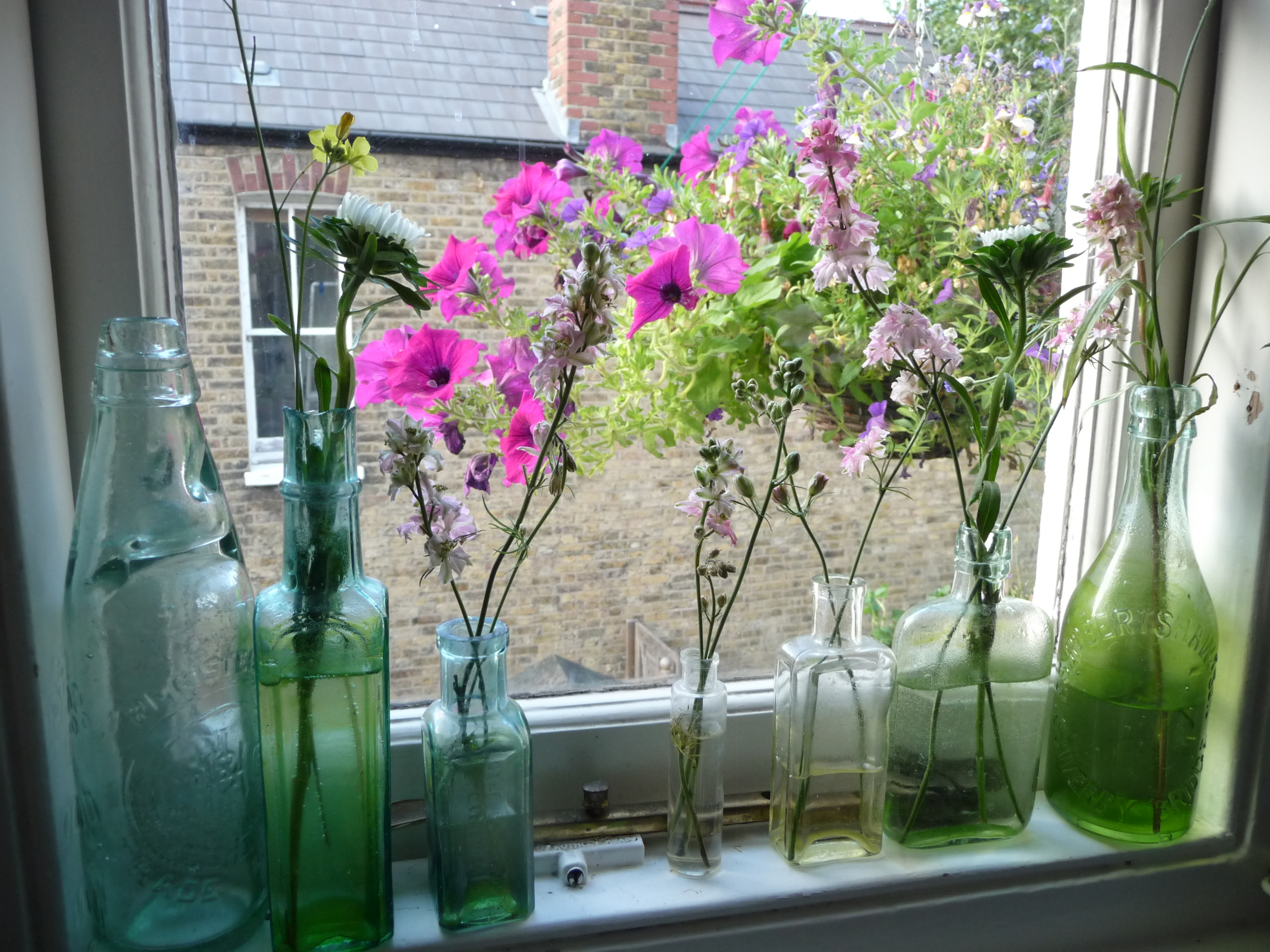 My vintage bottles on the kitchen window ledge enhanced by the hanging basket outside the window!  I stick anything in these bottles that I remove from the stem of a flower or bits and bobs from my tiny outside space. I don't mind the green mould that forms in the bottles; it's asethetcially beautiful !!