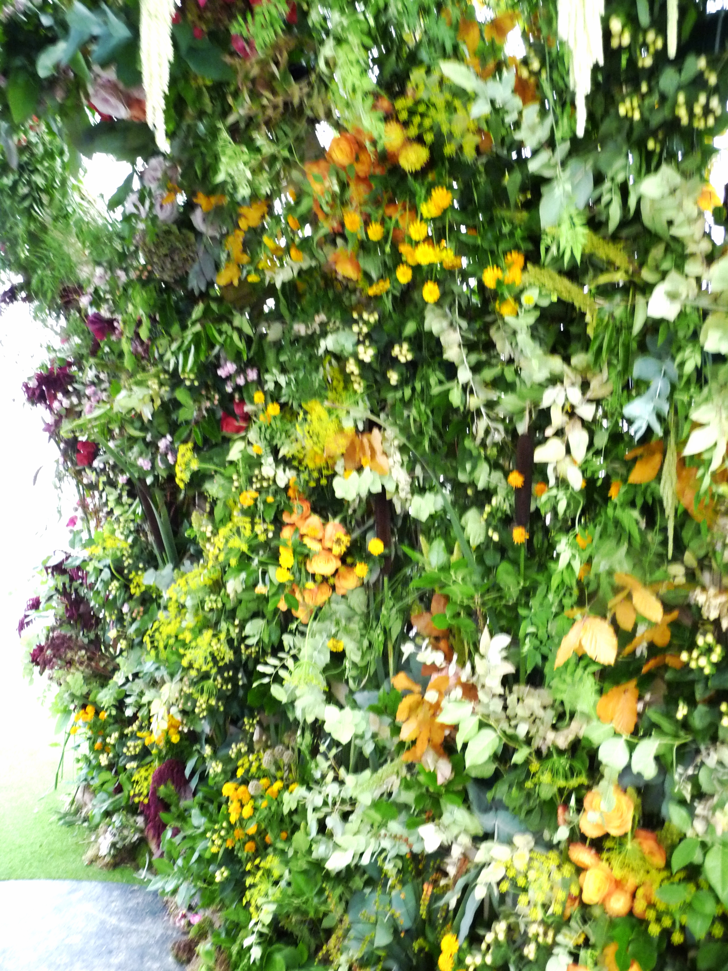 Inside the arch of flowers