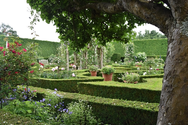 m_Rose Garden (17).jpg