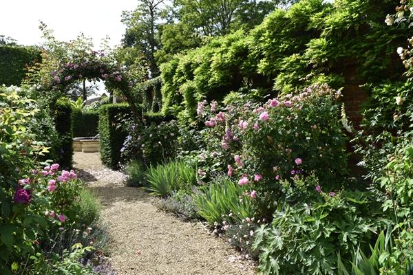 m_Rose Garden (38).jpg