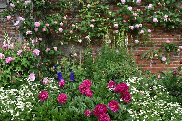 m_Rose Garden 41.jpg
