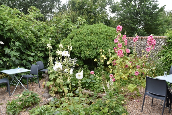 The cafe has seating among the hollyhocks and fig trees laden with fruit
