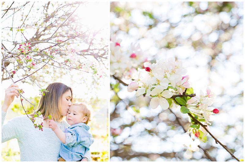 Lombard_family-shoot_14.jpg