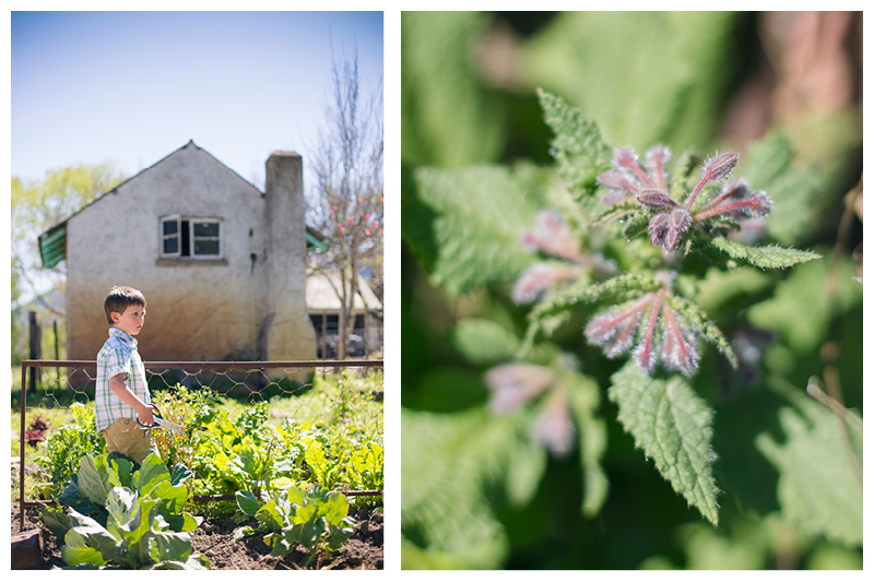 Painter_Eastern Cape_Family farm photoshoot_4.jpg