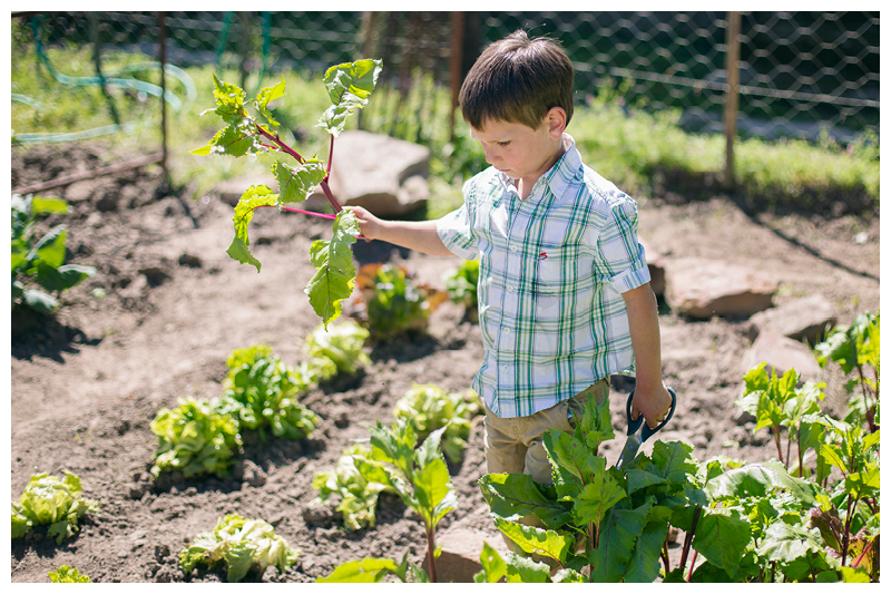 Painter_Eastern Cape_Family farm photoshoot_7.jpg