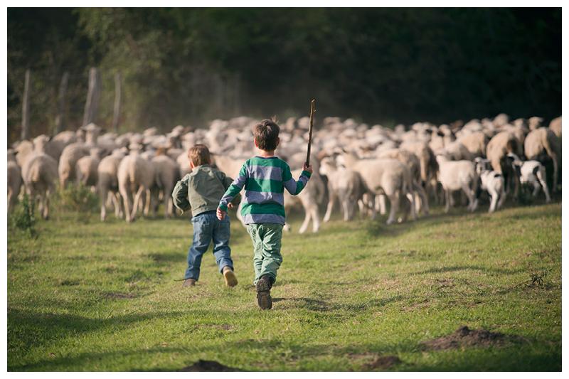 Painter_Eastern Cape_Family farm photoshoot_55.jpg