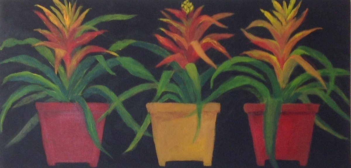 FLOWER POTS   Acrylic 15'' x 30''