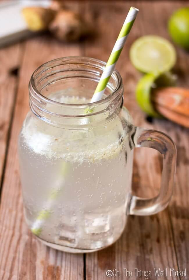 Homemade Ginger Ale | The Things We'll Make