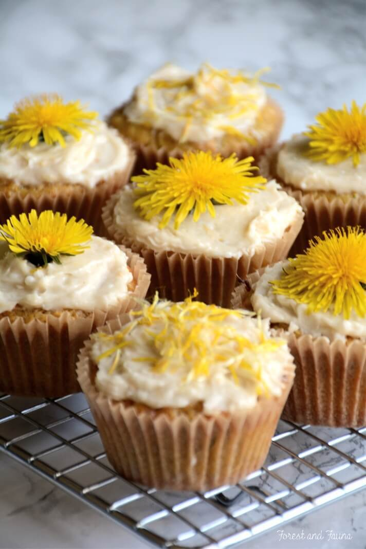 Dandelion and Lemon Paleo Cupcakes| Forest and Fauna