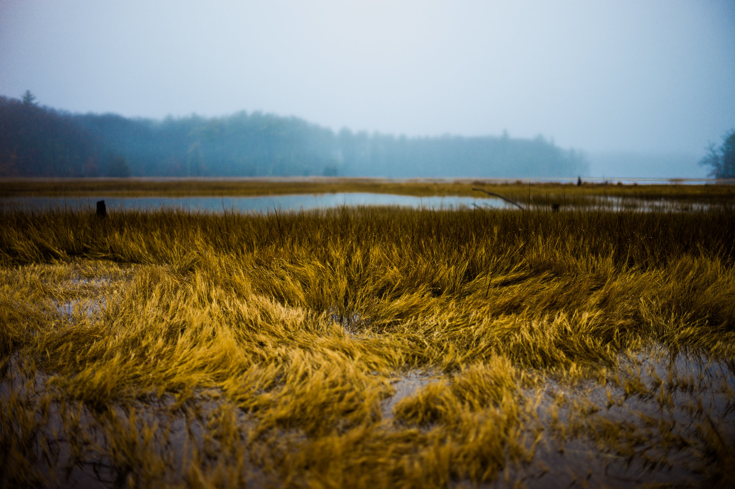 High Tide,Hampton Beach, NH