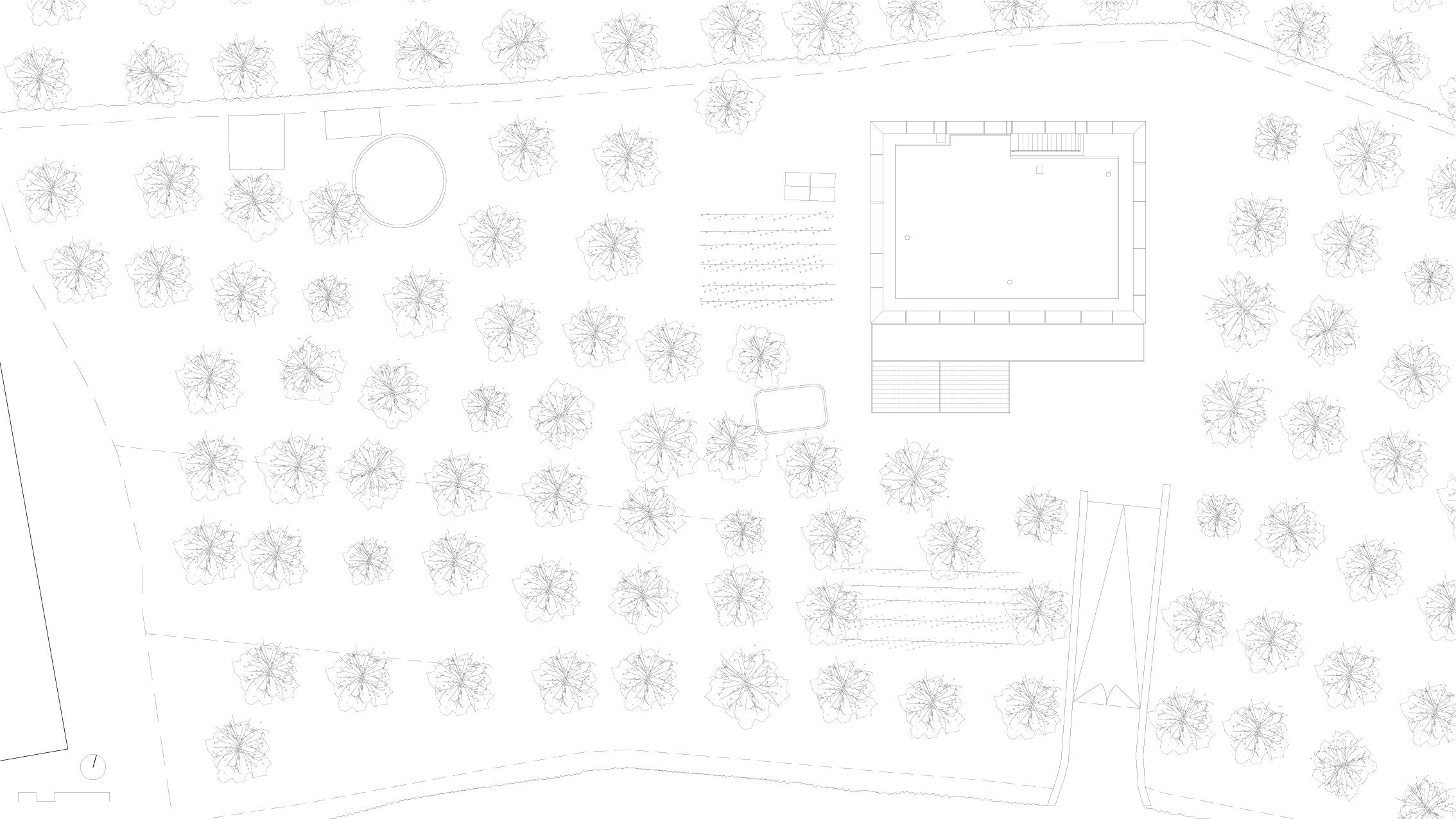 estiu_planta-coberta_100-wb.png