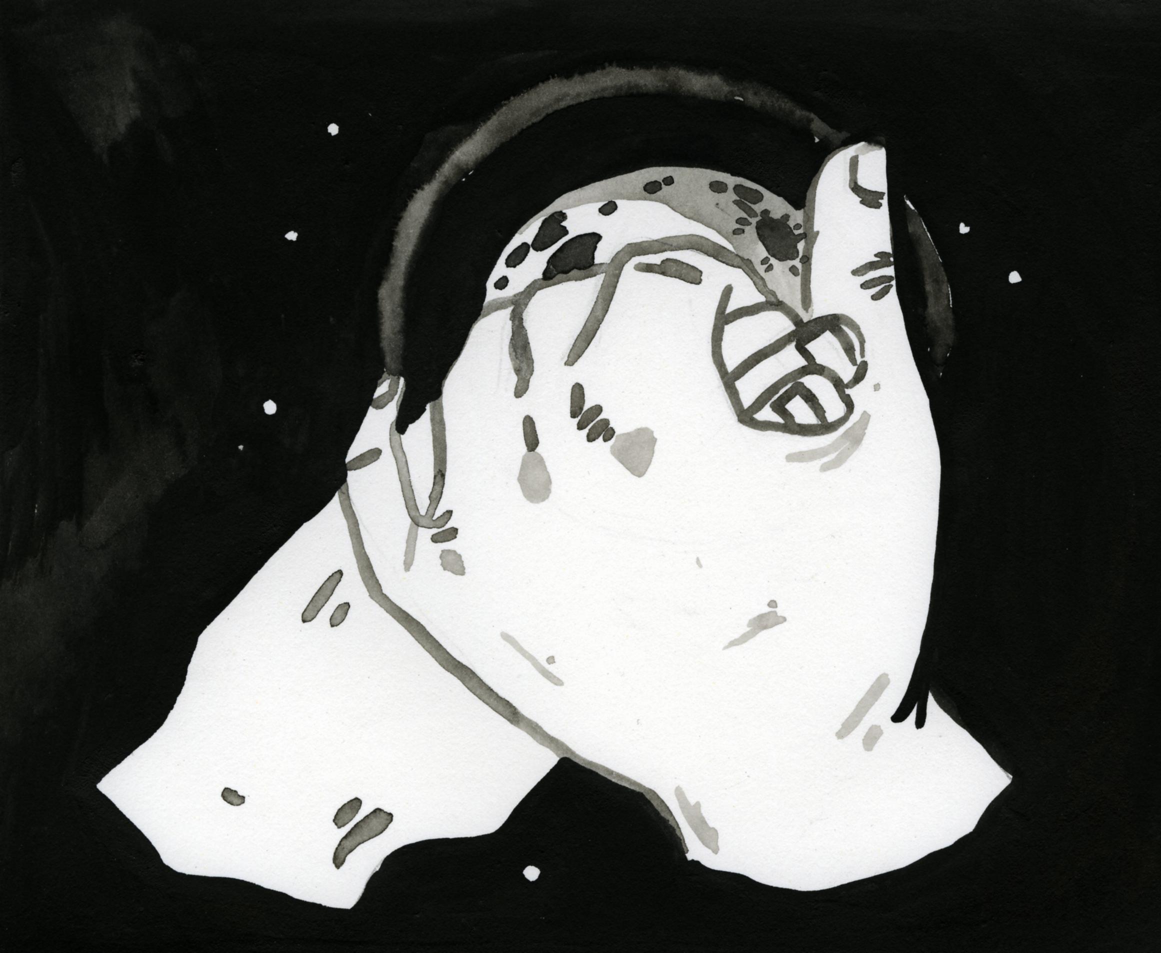 urania003.jpg