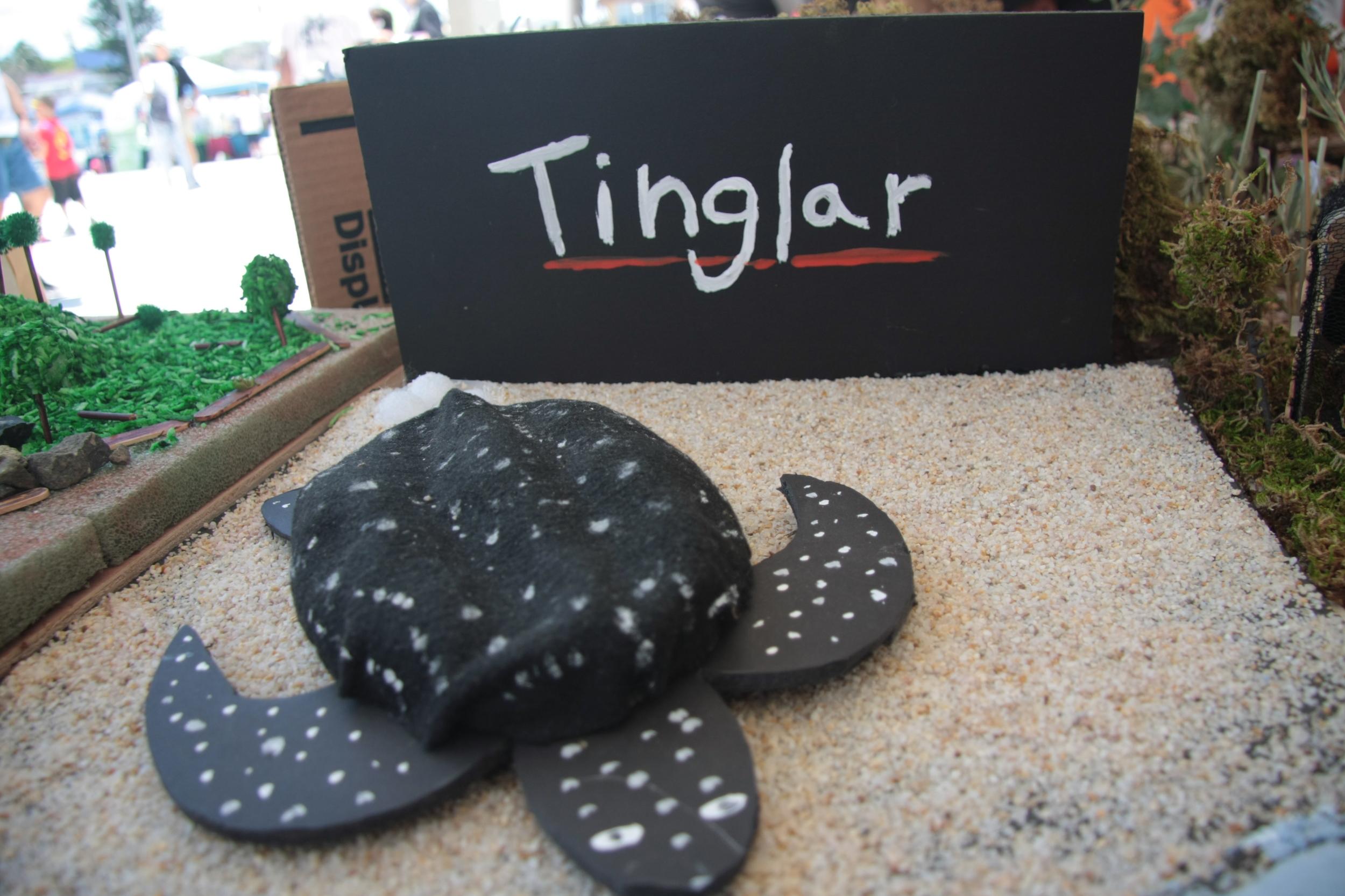 Floyd-6to Fest Tinglar 2011-18.JPG