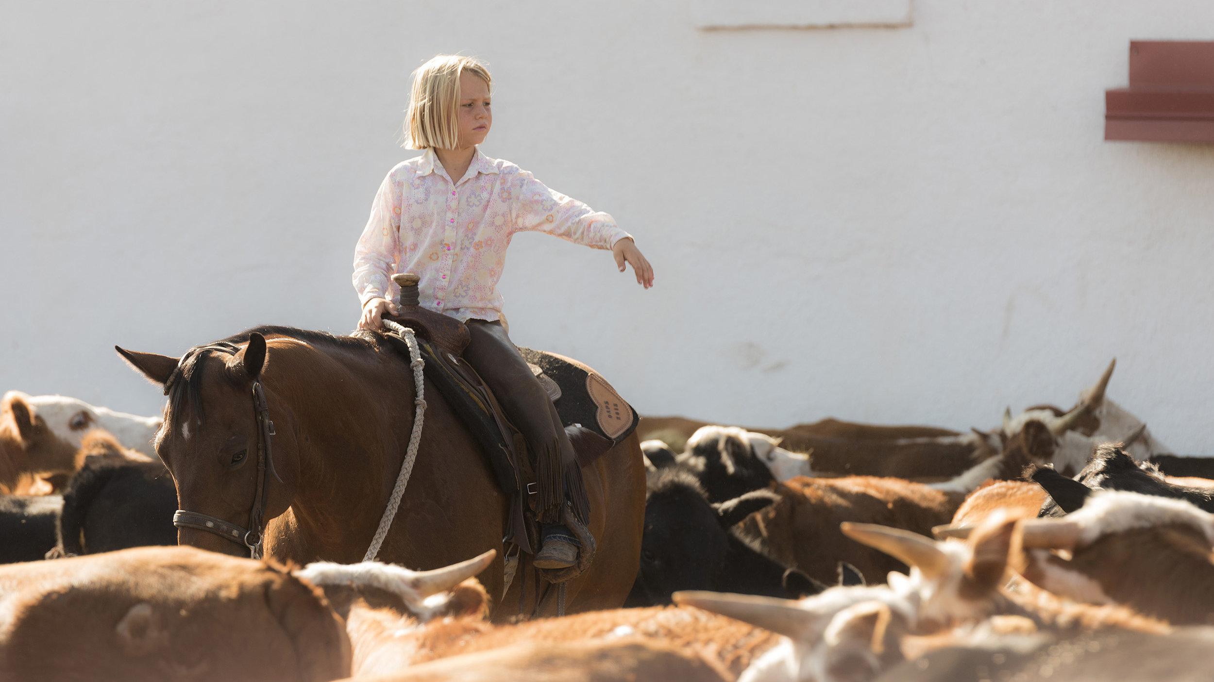 Mia Lews Works Cattle, 06 Ranch, Alpine Texas