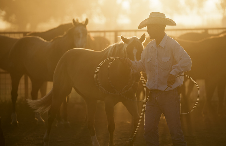 Ranch & Rodeo -