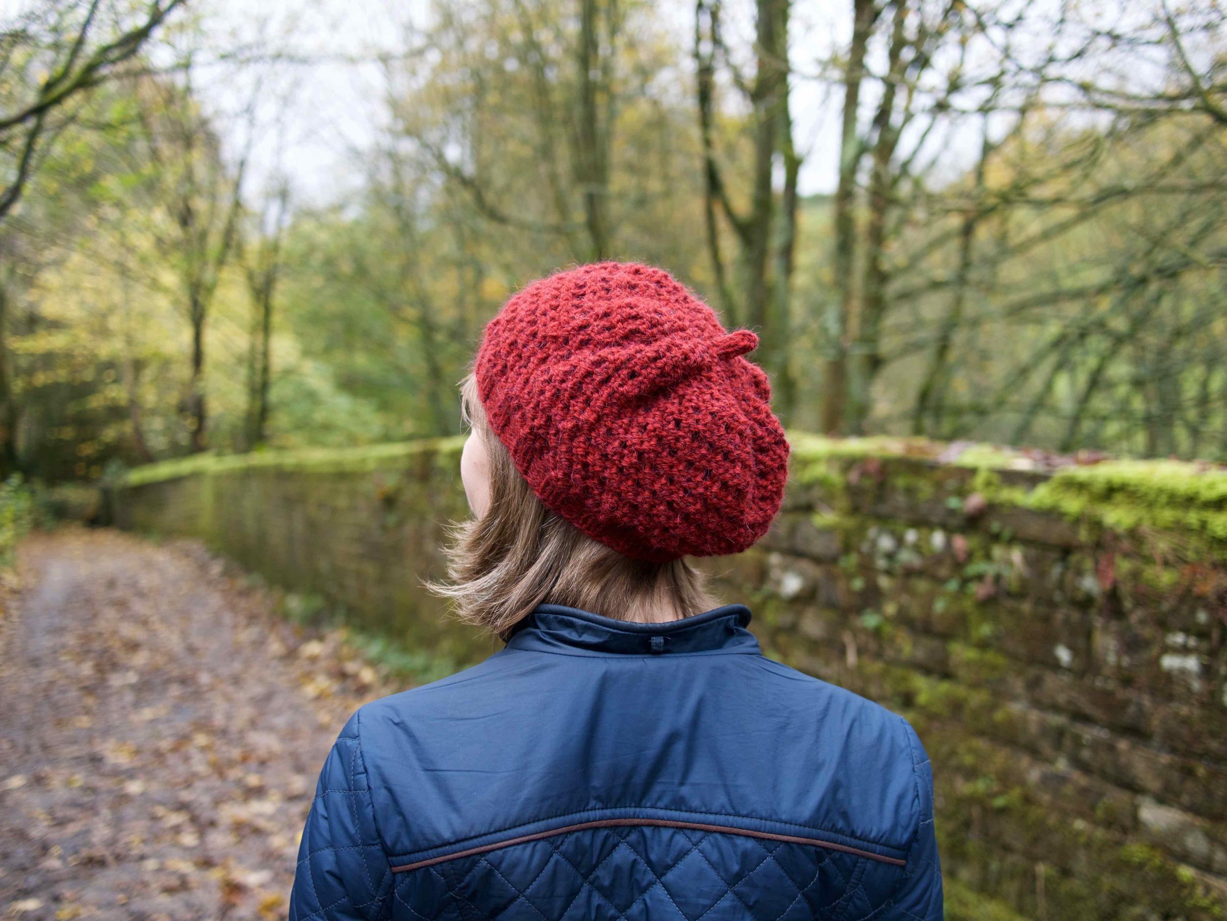 Dianthus beret